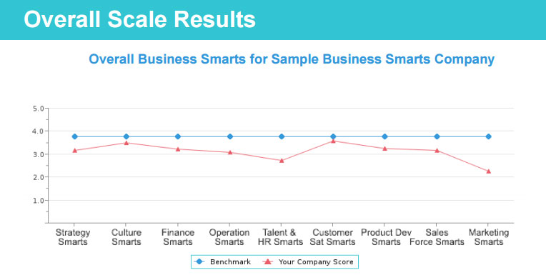 Overall Scales for Business Smarts Profile